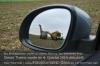 s13-04-spiegel-tiger-hawe-gut