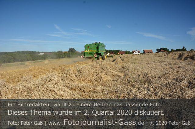 Der Einsatz von Wachstumsreglern bei Backgetreide wird diskutiert. Foto: Peter Gaß