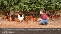 Agribusiness: Andre Stevens erklärt die Vorteile probiotischer Mikroorganismen bei der Geflügelhaltung. Foto: Peter Gaß