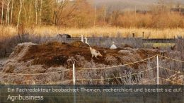"""Agribusiness: Nicht nur Freilandgeflügel ist von der Vogelgrippe bedroht.Peter Gaß. Ein Motiv aus dem Fotoalbum """"Agrarwende"""", 1. Auflage Januar 2021"""