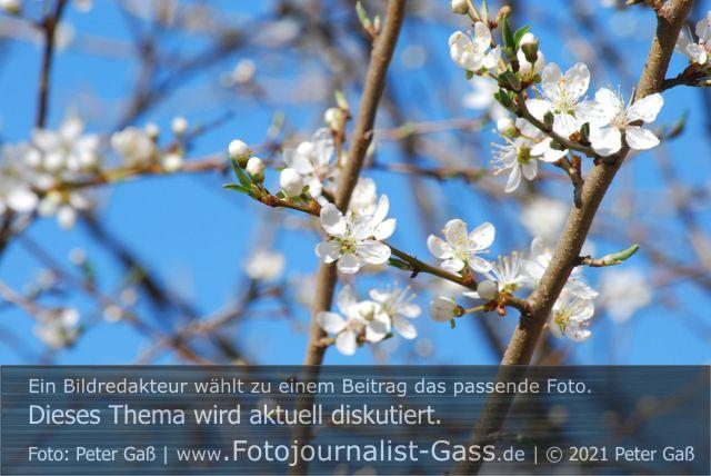 Titelbild Diskutiert, aktuell: Vom Eise befreit sind Strom und Bäche. Foto: Peter Gaß